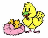 Mamã pássaro
