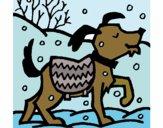Desenho Cão 11 pintado por BelMorim