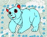 Urso da montanha