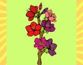 Desenho Flores de campo pintado por sonhadora