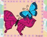 Desenho Borboletas pintado por @Godoi