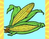 Desenho Espiga de milho  pintado por zuleikapas