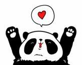 Panda amor