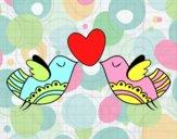 Pássaros com coração