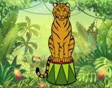 Desenho Tigre do circo pintado por LLL321