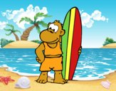 Macaco surfista
