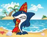 Tiburão surfista