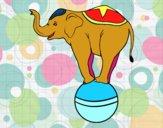 Desenho Elefante equilibrista pintado por Giovannamg