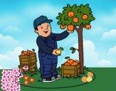Desenho Um fazendeiro pintado por ANALUMA