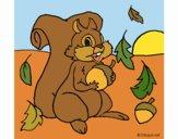 Desenho Esquilo pintado por Craudia