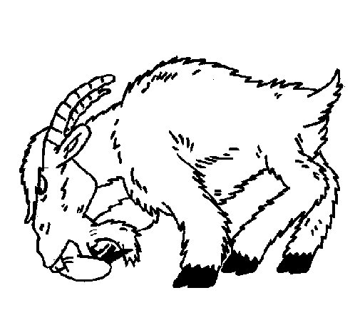 Desenho de Cabra aborrecida para Colorir