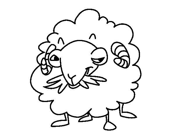 Desenho de Cabra de angora para Colorir