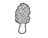 Desenho de Cogumelo morchella para colorear
