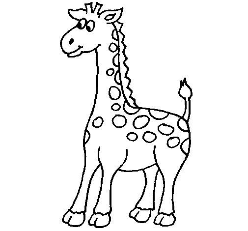 Desenho de Girafa 4 para Colorir