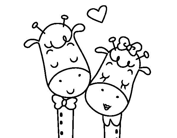 Desenho de Girafas amar para Colorir