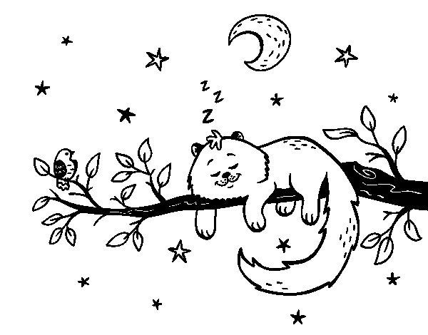 Dibujos De La Luna Para Colorear E Imprimir: Desenho De O Gato Ea Luna Para Colorir