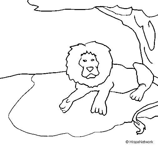 Desenho de O Rei Leão para Colorir