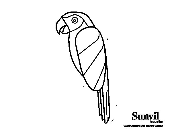 Desenho de Pássaro Arara para Colorir
