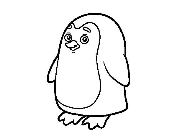 Desenho de Pinguim antártico para Colorir