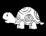 Desenho de Tartaruga contente para colorear