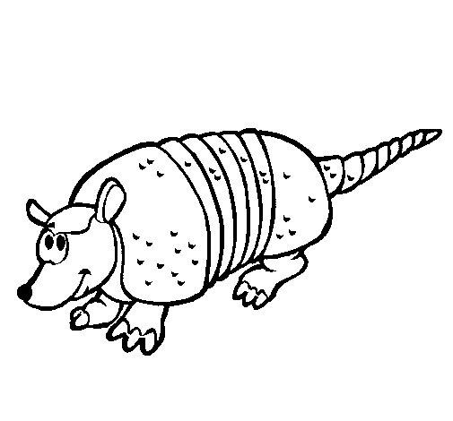 Desenho de Tatu para Colorir