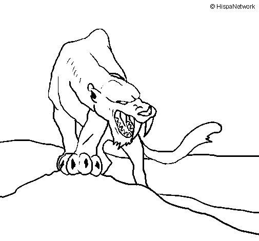 Desenho de Tigre com dentes afiados para Colorir