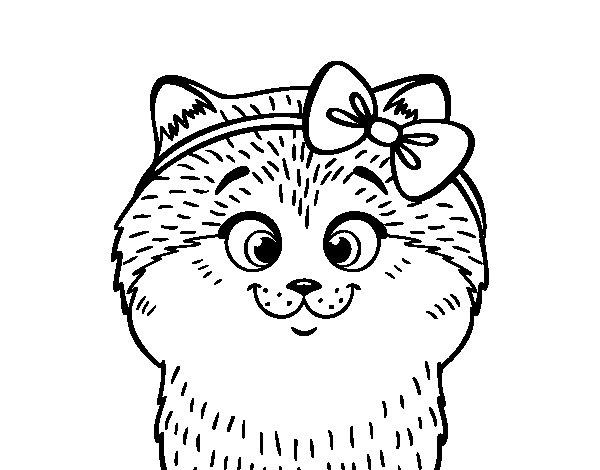 Desenho de Uma gatinha com laço para Colorir