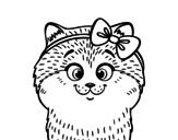 Desenho de Uma gatinha com laço para colorear