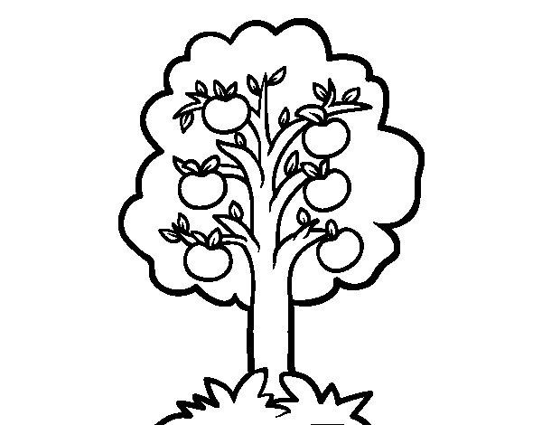 Desenho de Uma macieira para Colorir