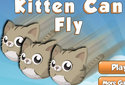 Gatos que voam