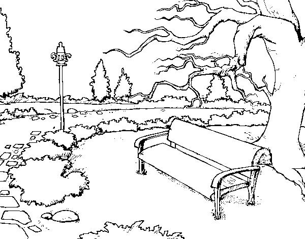 Desenho De Paisagem Da Parque Para Colorir Colorir Com