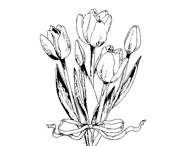 Desenho De Tulipas Com Um Laco Para Colorir Colorir Com