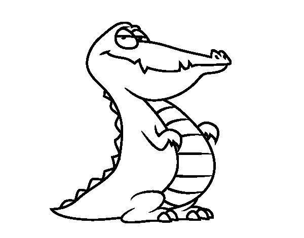 Desenho De Um Jacare Para Colorir Colorir Com
