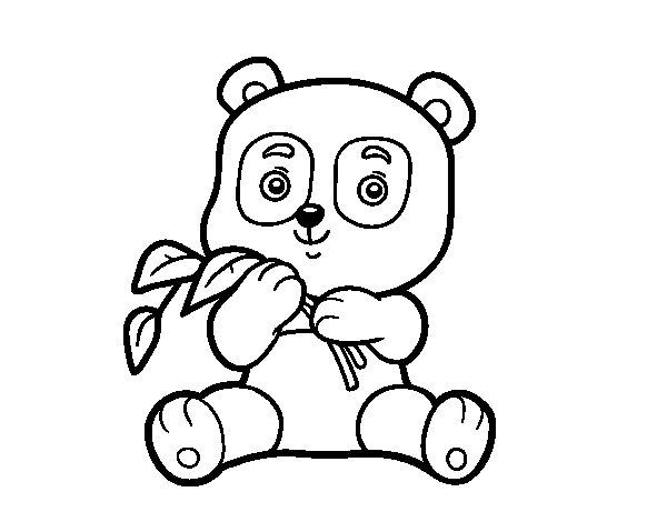 Urso Panda Para Colorir Online Panda Colorir